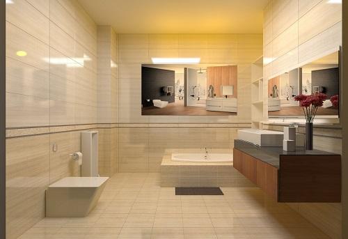 Mua gạch lát nền nhà vệ sinh Đồng Tâm ở đâu tốt? Ưu điểm khi sử dụng là gì?