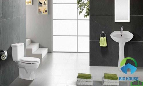 gạch ốp nhà vệ sinh taicera