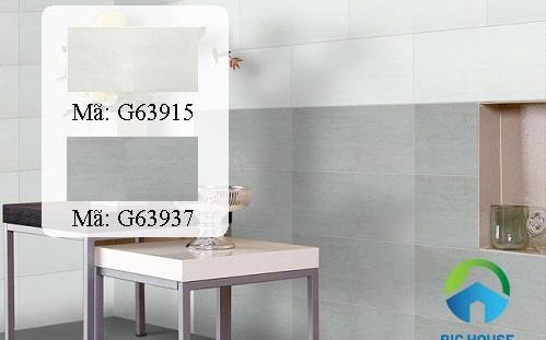 phối cảnh gạch taicera 30x60 2